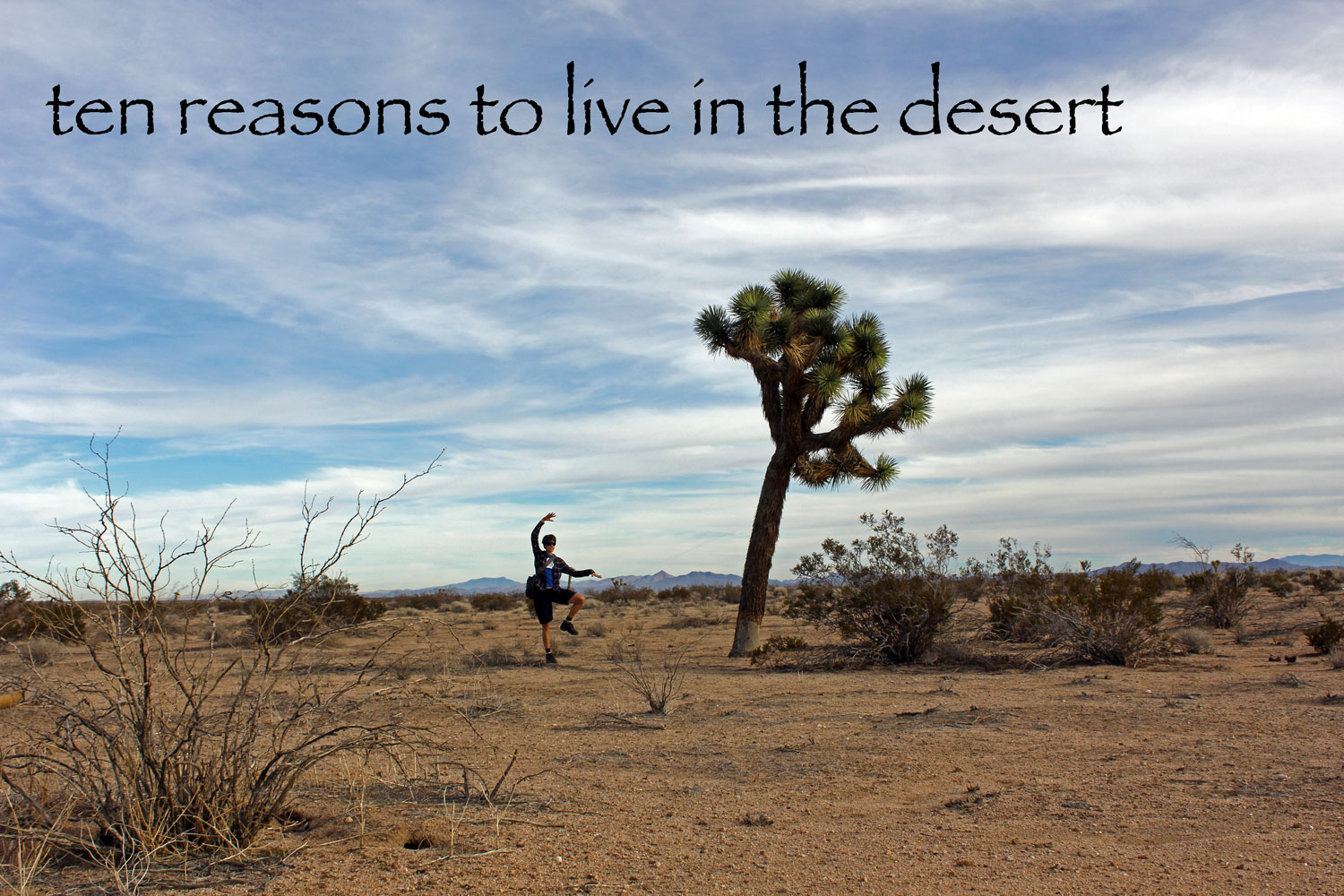 3be98c08b 10 Reasons to Live in the Desert