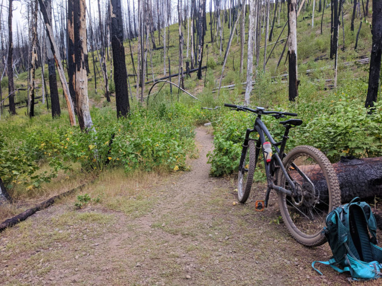 765173a031b I do training rides or recovery rides by myself pretty frequently, but  doing longer solo rides in the wilderness has become rare in recent years,  ...